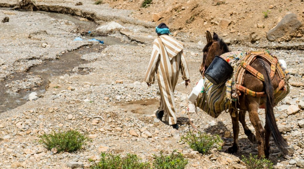 Ein Mann führt einen Esel. In der Geschichte im Text geht es um negative Kritik